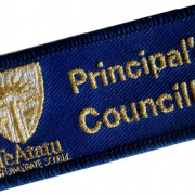 School Embroidered Badges